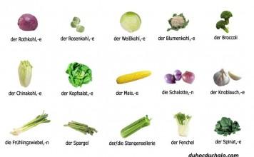 Học tiếng Đức qua hình ảnh mỗi ngày tại HALO