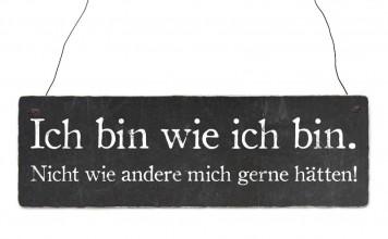 học tiếng Đức qua bài hát wie ich bin